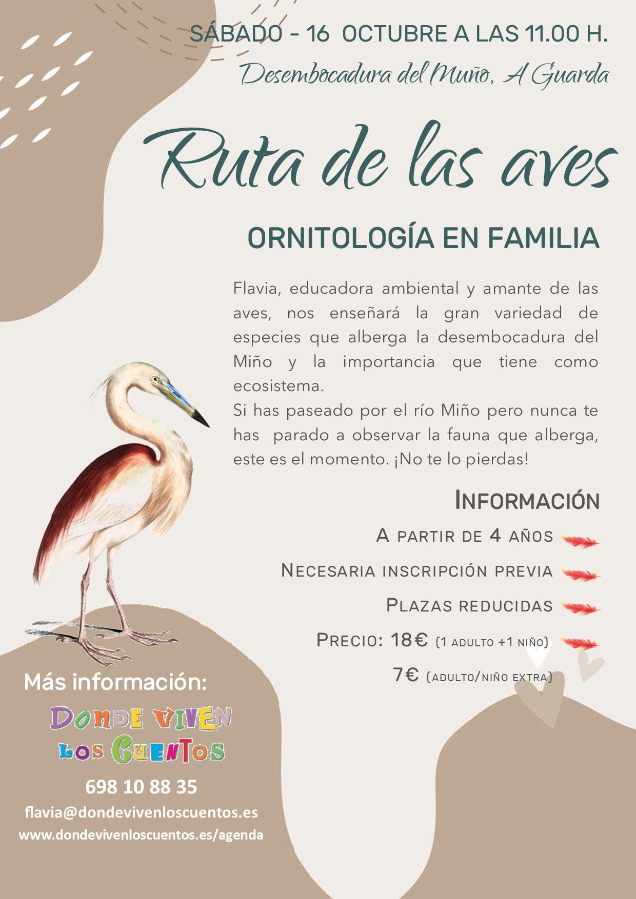 Ruta en familia sobre las aves en A Guarda